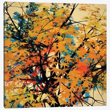 Autumn Colors II Canvas Print #AEZ5} by Angel Estevez Art Print
