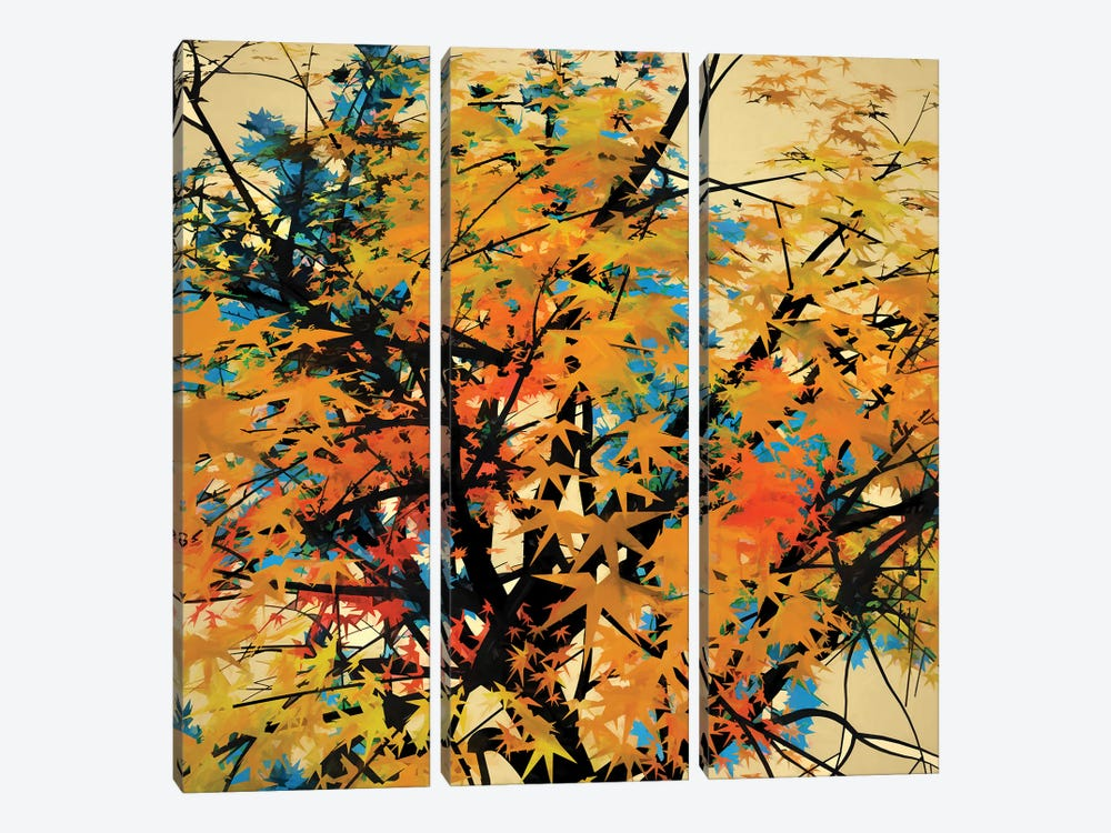 Autumn Colors II by Angel Estevez 3-piece Canvas Wall Art