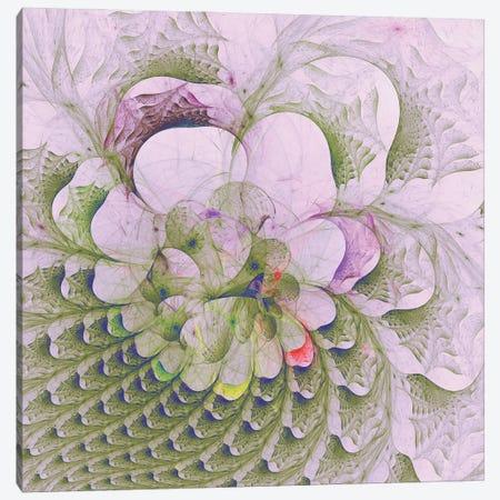 Pink Camellia Canvas Print #AEZ68} by Angel Estevez Art Print