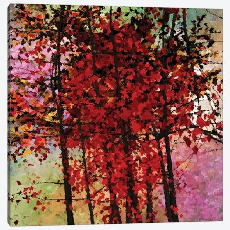 Autumn Colors III Canvas Print #AEZ6} by Angel Estevez Art Print