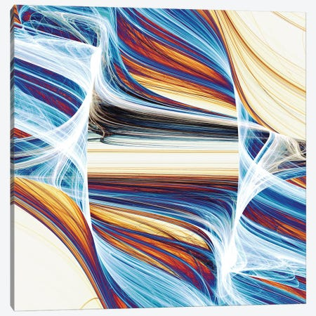 Interwoven And Winding Canvas Print #AEZ87} by Angel Estevez Canvas Art