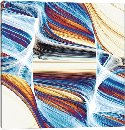 Interwoven And Winding Canvas Art Print