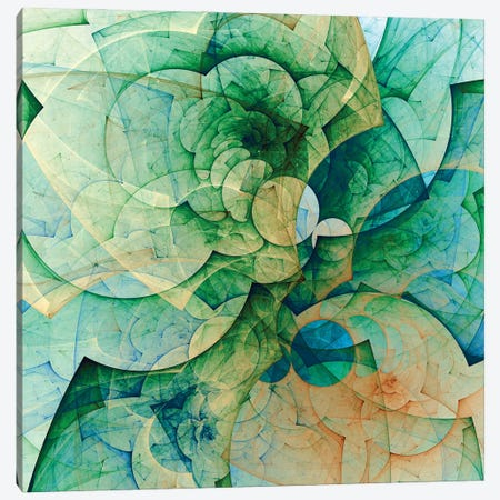 Greenish And Transparent Canvas Print #AEZ89} by Angel Estevez Canvas Print