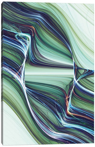 Interwoven And Winding II Canvas Art Print