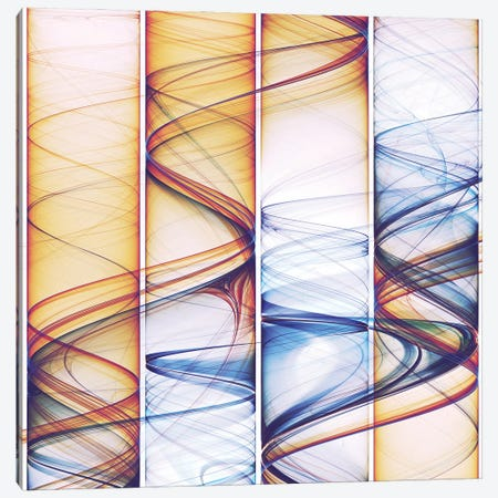 Winding Lines Canvas Print #AEZ95} by Angel Estevez Canvas Print