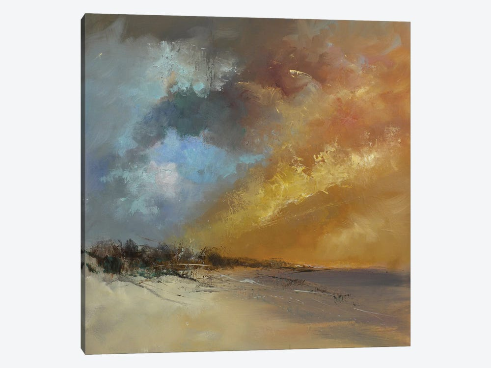 Sun Blaze by Anne Farrall Doyle 1-piece Canvas Wall Art