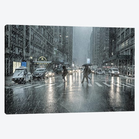 That Day It Snowed Canvas Print #AFK1} by Alison Frank Canvas Print