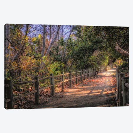 Pretty Path Dreamy Feel Canvas Print #AFK24} by Alison Frank Art Print