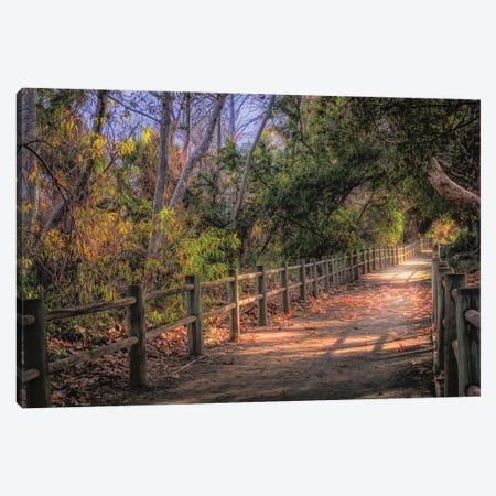 Pretty Path Dreamy Feel Canvas Print #AFK24} by Alison Frank Art Print