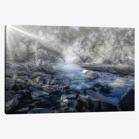 Foggy Creek Canvas Print #AFK50} by Alison Frank Art Print