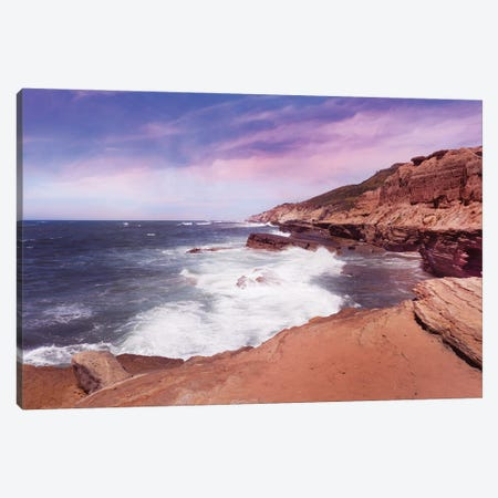 At The Edge In Point Loma Canvas Print #AFK67} by Alison Frank Canvas Print