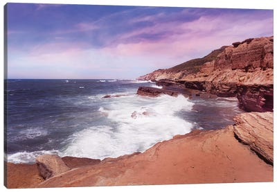 At The Edge In Point Loma Canvas Art Print
