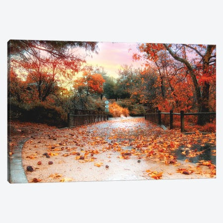 Autumn In Discovery Lake Canvas Print #AFK69} by Alison Frank Canvas Wall Art