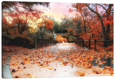 Autumn In Discovery Lake Canvas Art Print