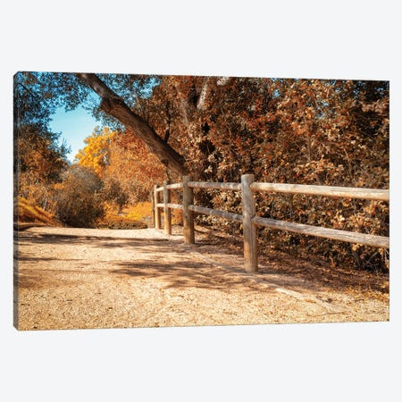 Autumn In Yellow Canvas Print #AFK70} by Alison Frank Canvas Print