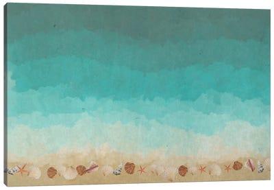 Seashells At The Seashore Canvas Art Print