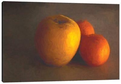 Apple And Oranges Canvas Art Print
