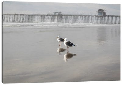 Two Seagulls At The Pier Canvas Art Print