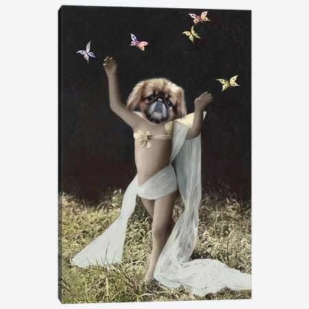 Butterfly Boy Canvas Print #AFN19} by Animal Fancy Canvas Artwork