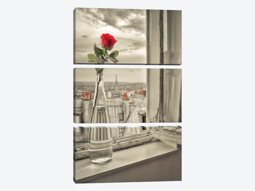 Paris IV by Assaf Frank 3-piece Canvas Print