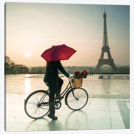 Paris XIX 3-Piece Canvas #AFR154} by Assaf Frank Art Print