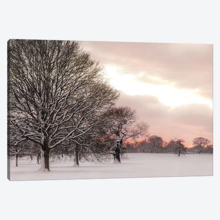 Rosy Sunset Canvas Print #AFR201} by Assaf Frank Canvas Art