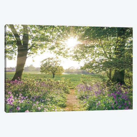 Something Beautiful Canvas Print #AFR202} by Assaf Frank Canvas Art