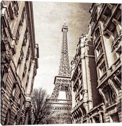 Looking Up Canvas Art Print