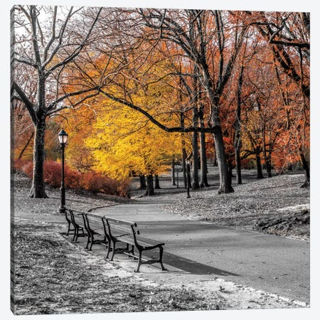 Park Pretty I Canvas Print #AFR37} by Assaf Frank Canvas Art Print