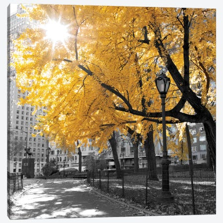 Park Pretty II Canvas Print #AFR38} by Amanda J. Brooks Canvas Artwork