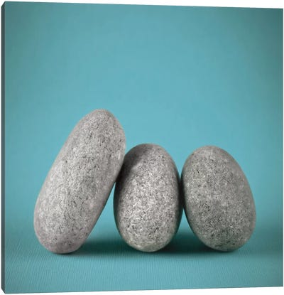 Rock Art III Canvas Art Print