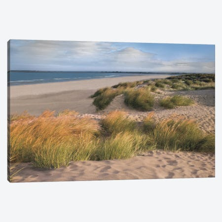 Sandy Shores Canvas Print #AFR46} by Assaf Frank Canvas Wall Art