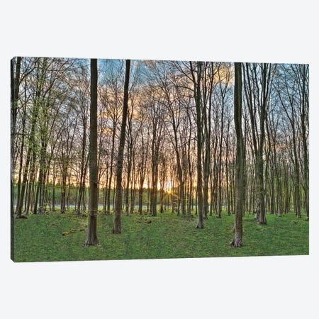 Secret Sunset Canvas Print #AFR49} by Assaf Frank Art Print