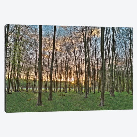 Secret Sunset Canvas Print #AFR49} by Assaf Frank Art Print