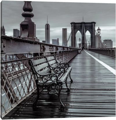 Bridge Beauty Canvas Art Print