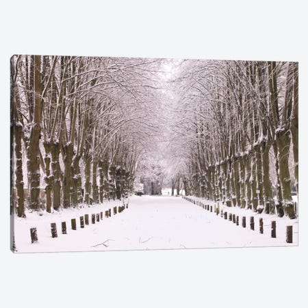 Winter's Aisle Canvas Print #AFR63} by Assaf Frank Canvas Art Print
