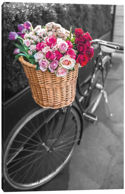 Basket Of Flowers I Canvas Art Print