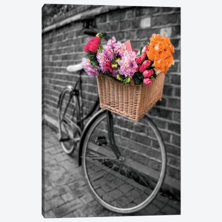 Basket Of Flowers II Canvas Print #AFR65} by Assaf Frank Canvas Art
