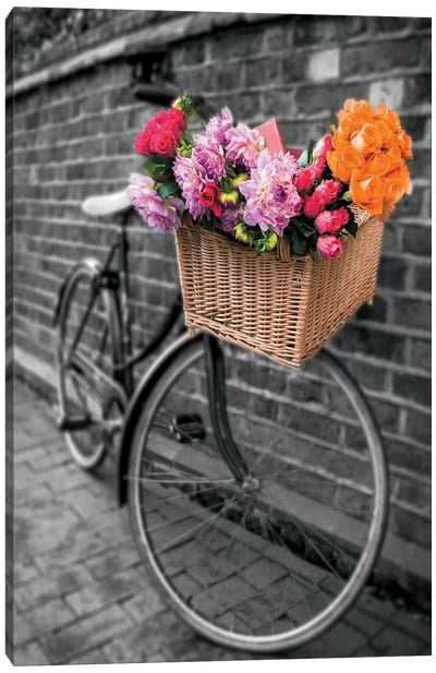 Basket Of Flowers II Canvas Art Print