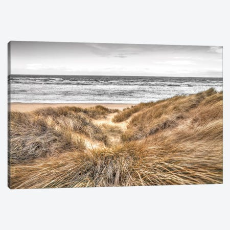Beach Dunes Canvas Print #AFR66} by Assaf Frank Canvas Art