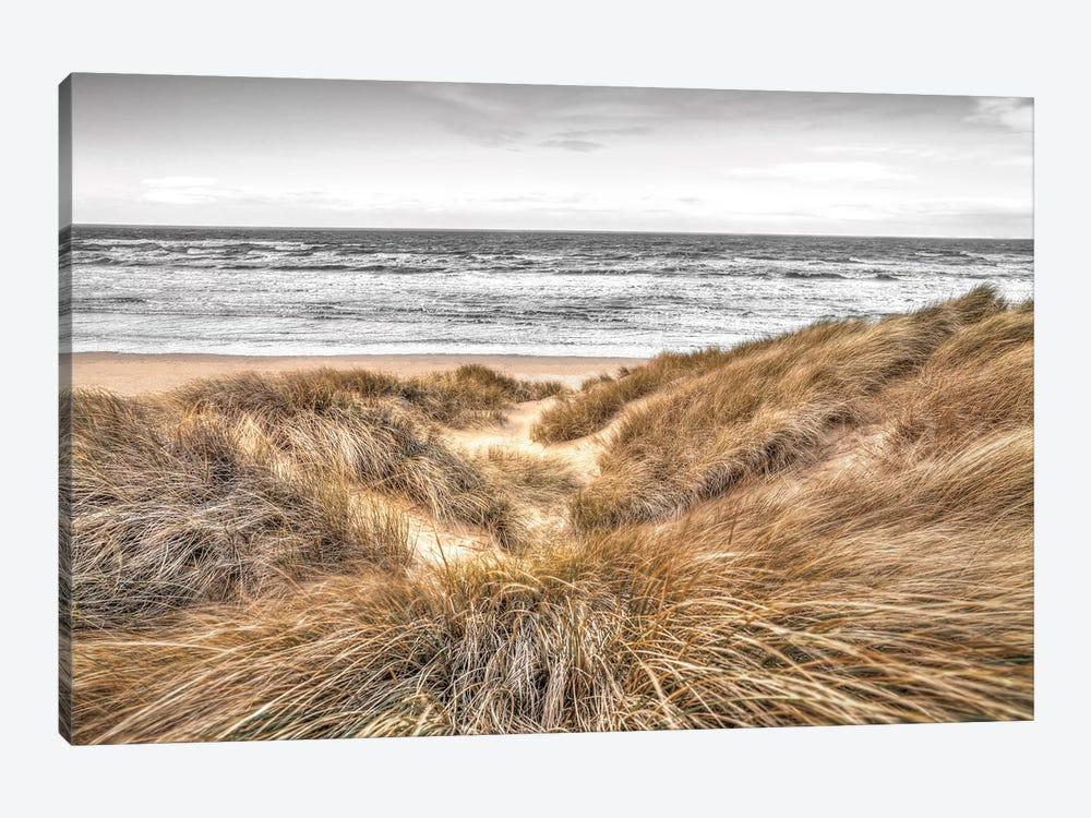 Beach Dunes by Assaf Frank 1-piece Canvas Wall Art