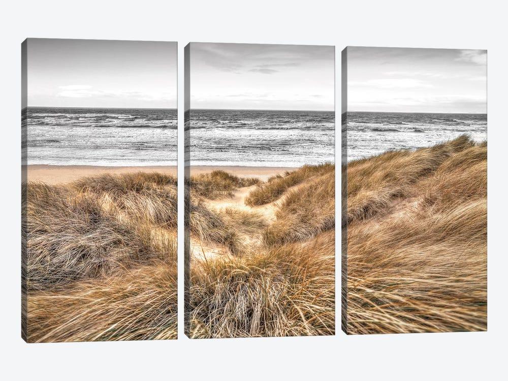 Beach Dunes by Assaf Frank 3-piece Canvas Art
