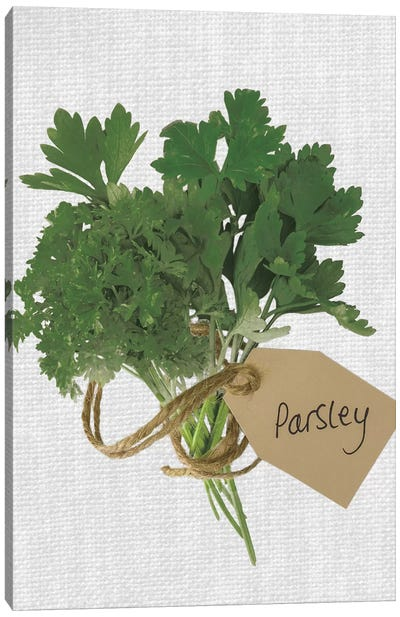 Parsley Canvas Art Print