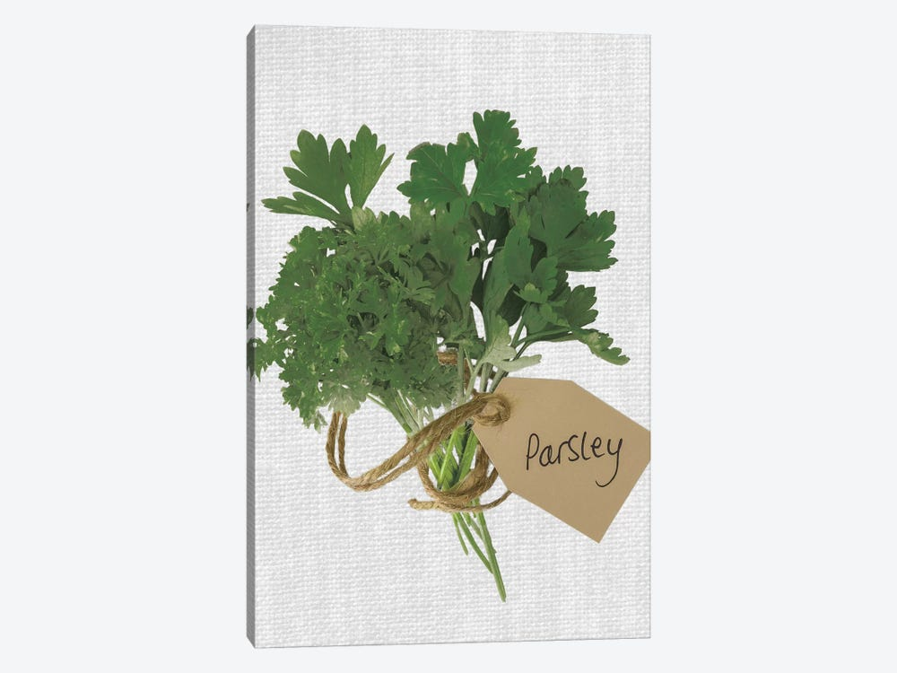 Parsley by Assaf Frank 1-piece Art Print
