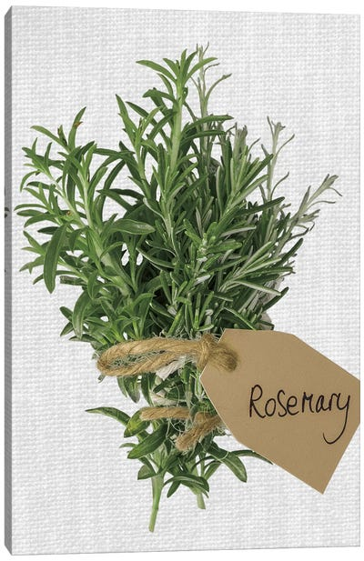 Rosemary Canvas Art Print