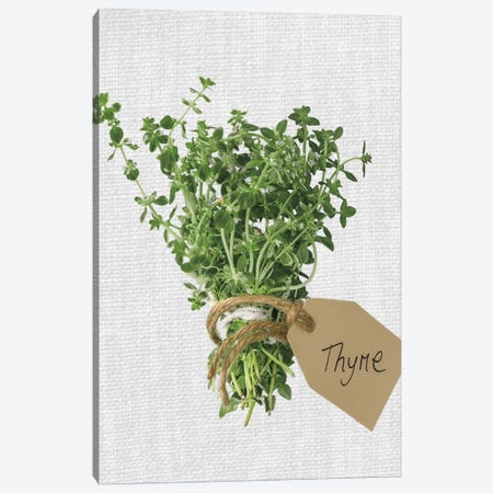 Thyme Canvas Print #AFR82} by Assaf Frank Art Print