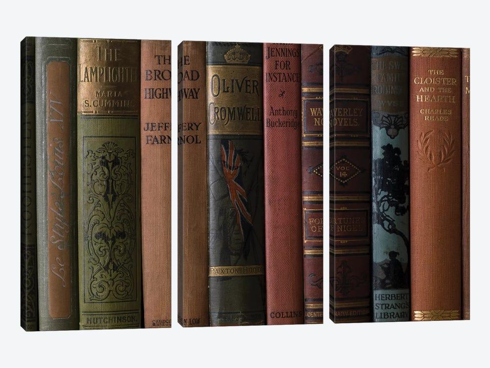 Books III by Assaf Frank 3-piece Canvas Art Print