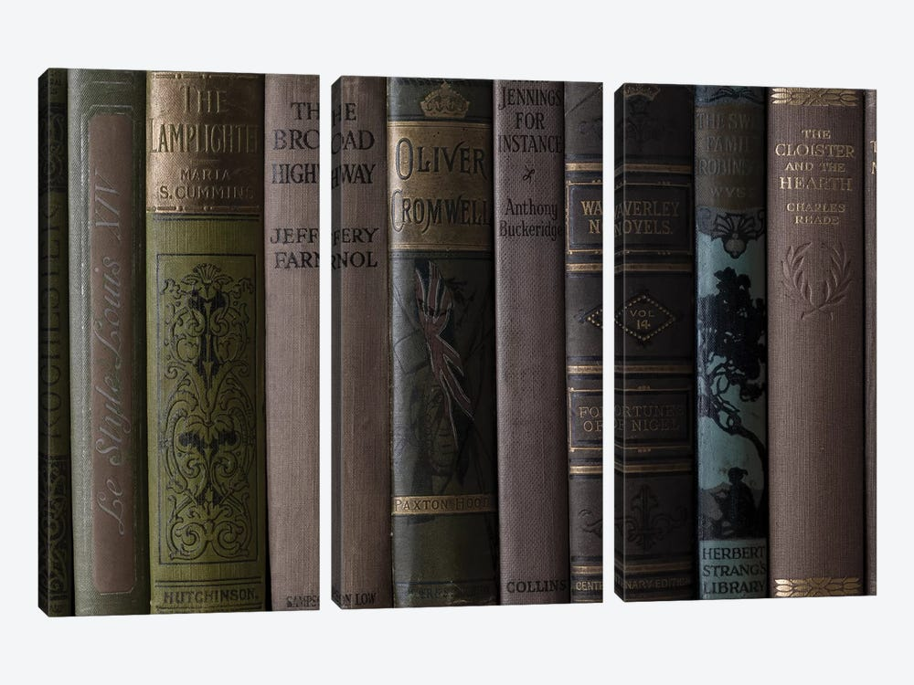 Books IV by Assaf Frank 3-piece Canvas Wall Art