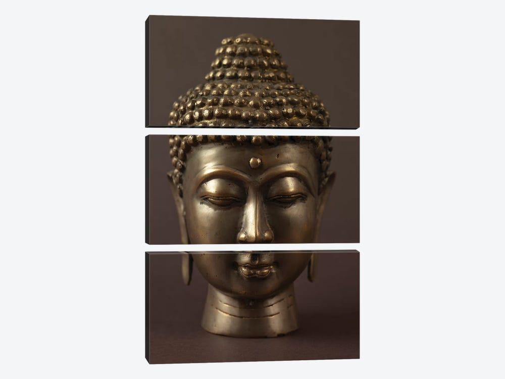 Buddha I by Assaf Frank 3-piece Art Print