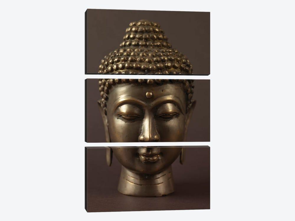 Buddha I by Assaf Frank 3-piece Art Print